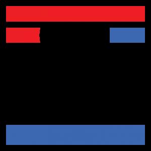 IFS Icon